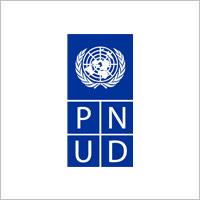 L-PNUD.jpg
