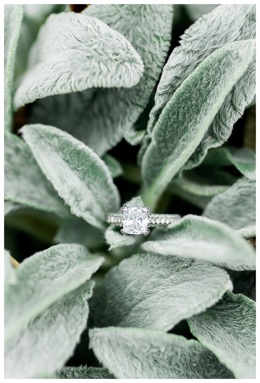 everleigh-photography-cincinnati-wedding-photographer-loveland-castle-cincinnati-engagement-photographer-21