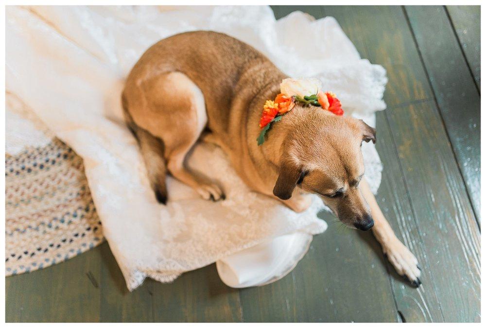 everleigh-photography-northern-kentucky-wedding-photographer-rustic-cabin-wedding-cincinnati-wedding-photographer-wedding-photo-inspiration-wedding-decor-inspiration-20