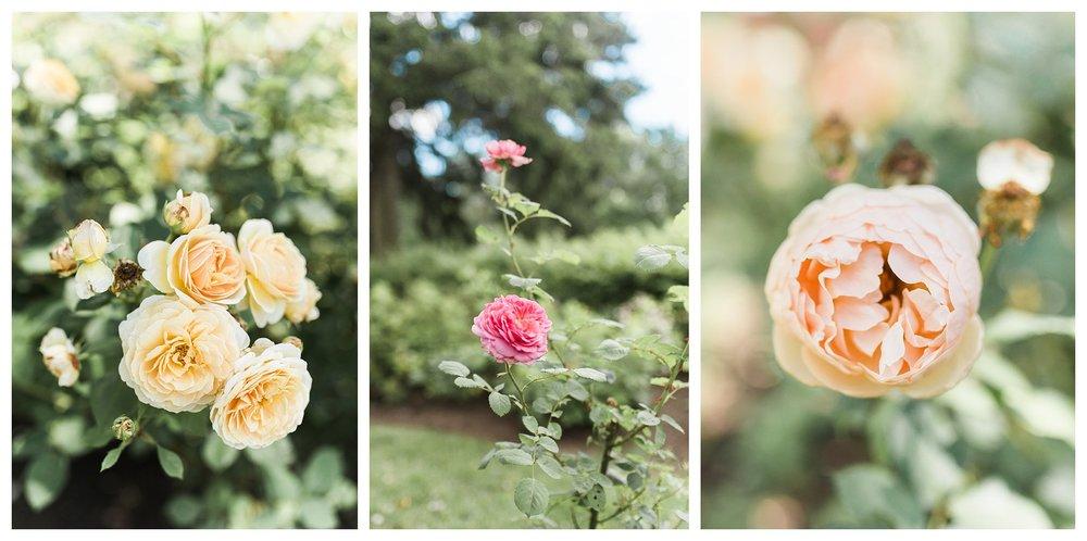pinecroft-crosley-estate-everleigh-photography-cincinnati-wedding-photographer-19