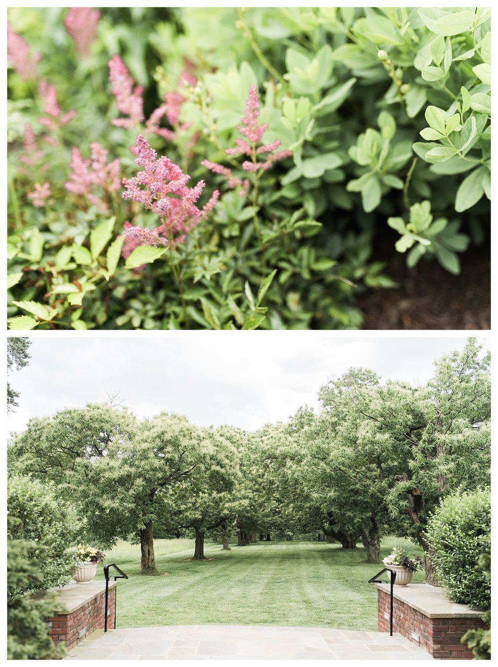 pinecroft-crosley-estate-everleigh-photography-cincinnati-wedding-photographer-20