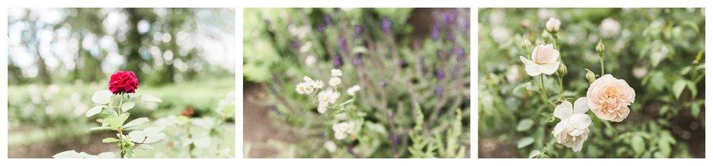 pinecroft-crosley-estate-everleigh-photography-cincinnati-wedding-photographer-24