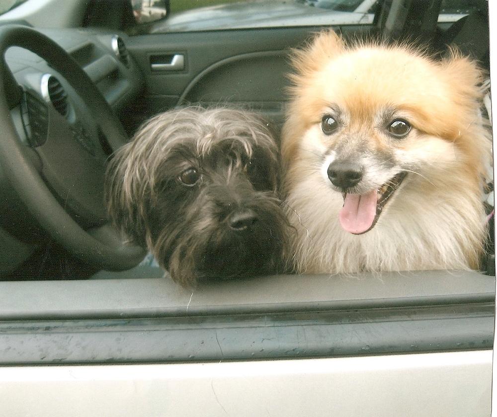 Mac and Petey