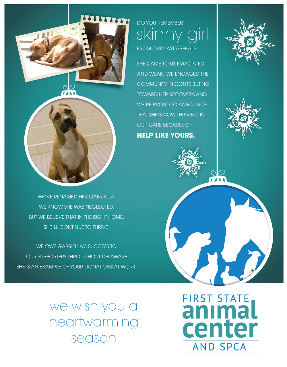 FSAC-SPCA Winter Appeal 2013_Page_1.png