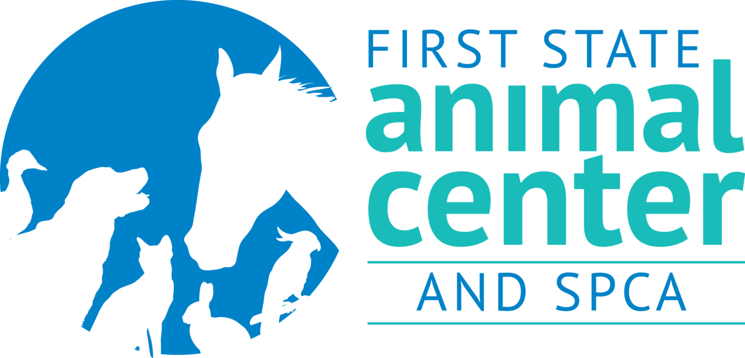 volunteer job opportunities first state animal center and spca volunteer job opportunities