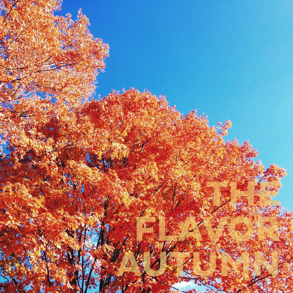TheFlavorOrange_AlbumCover.jpg