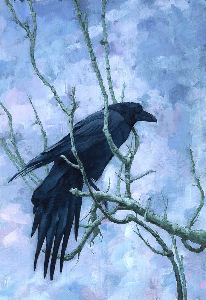 12 crow.jpg