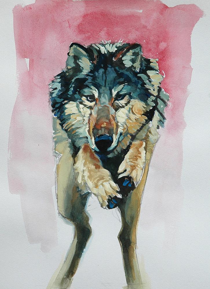 wolf gouache (3).JPG
