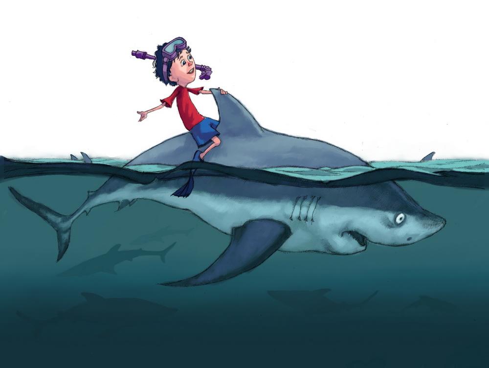5 shark.jpg