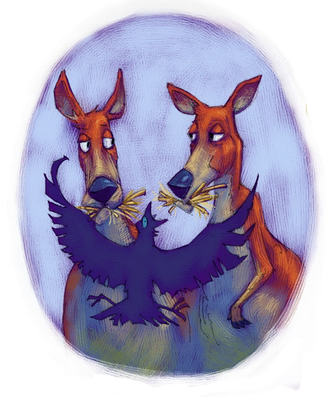 44 kangaroo.jpg