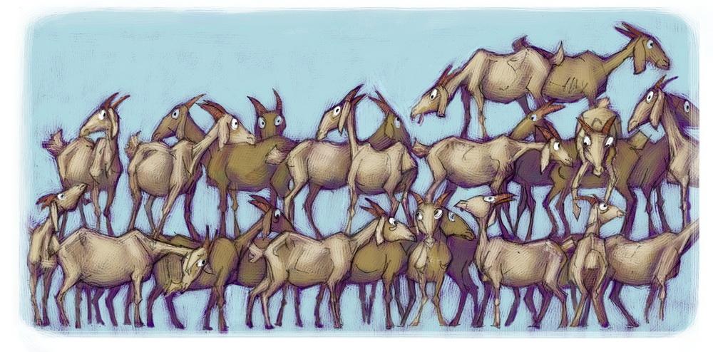 50 goats.jpg