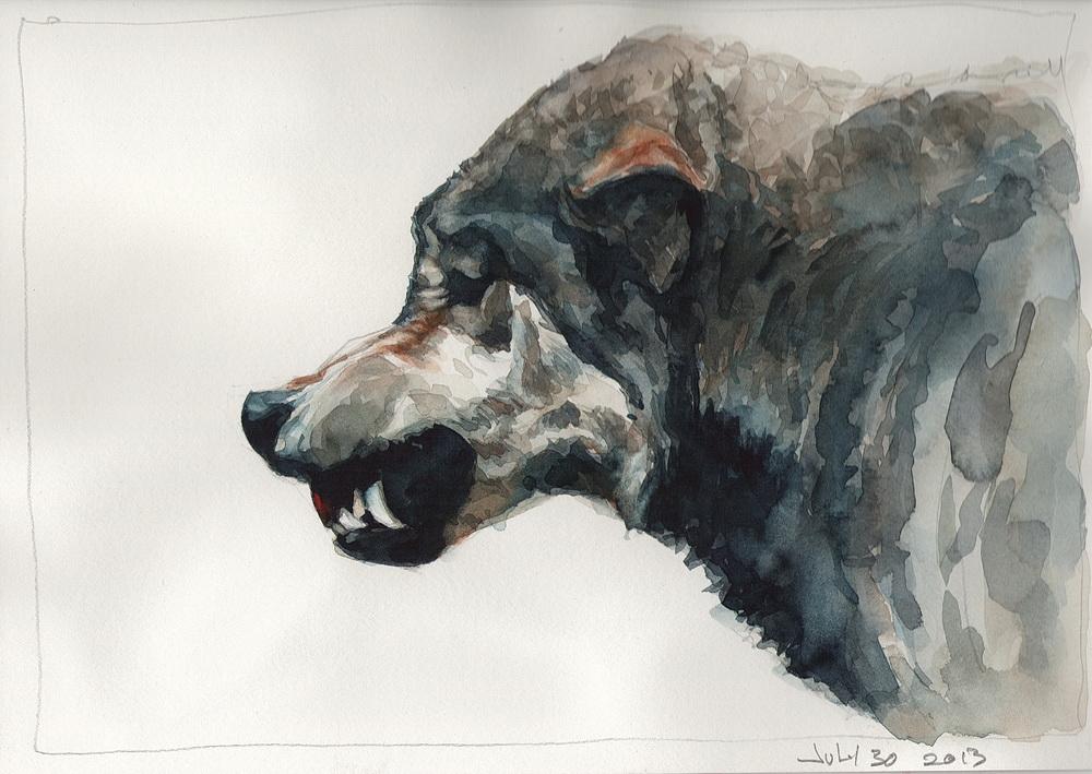 10 wolf.jpg