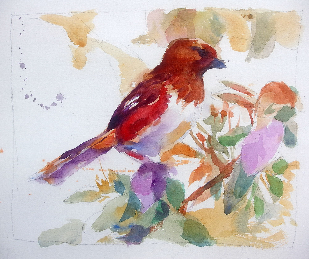 37 watercolor bird.jpg