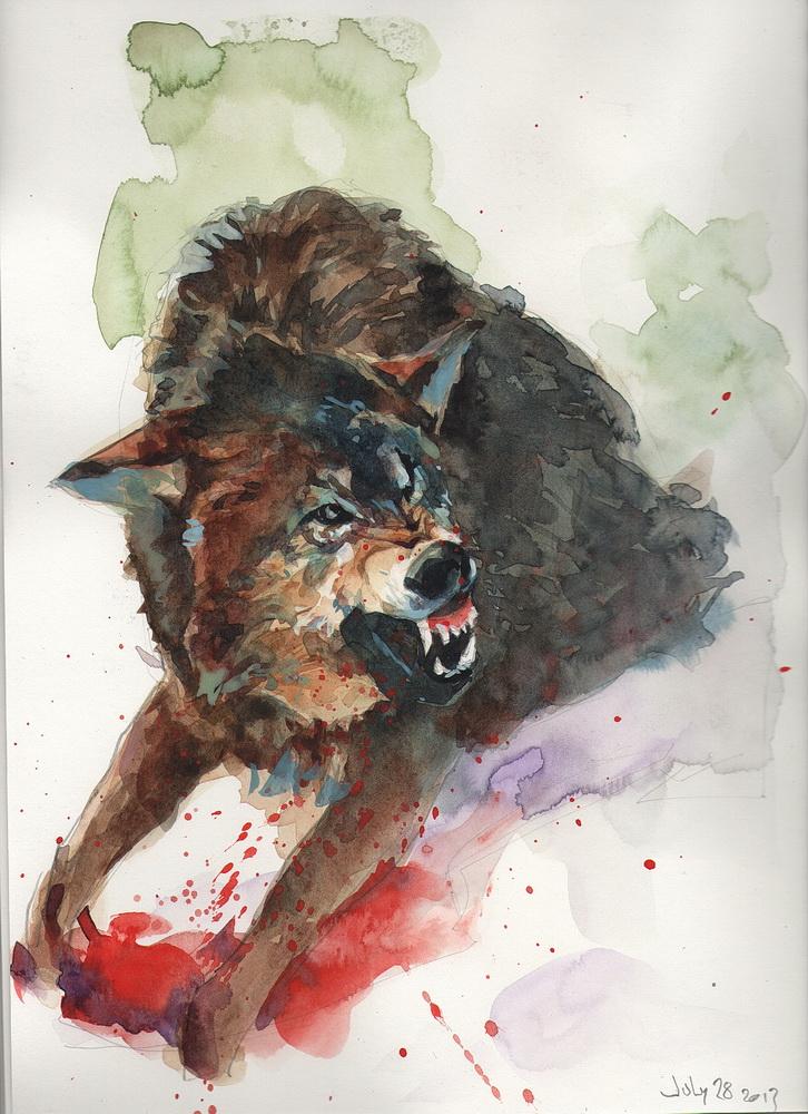 51 wolf.jpg
