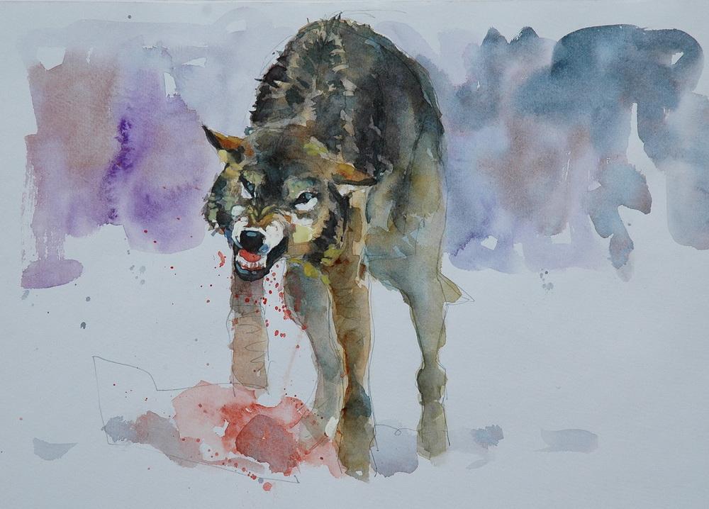 52 wolf.JPG