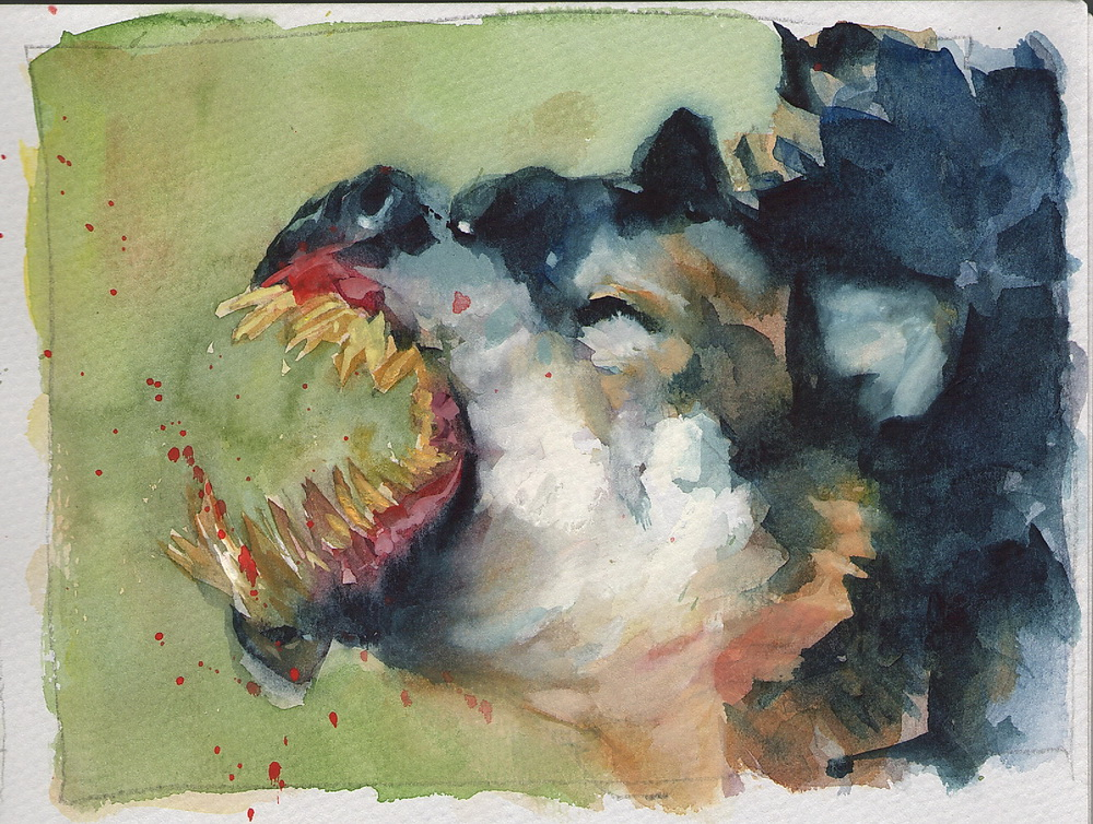 56 watercolor.jpg