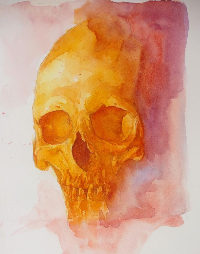 69 skull.JPG