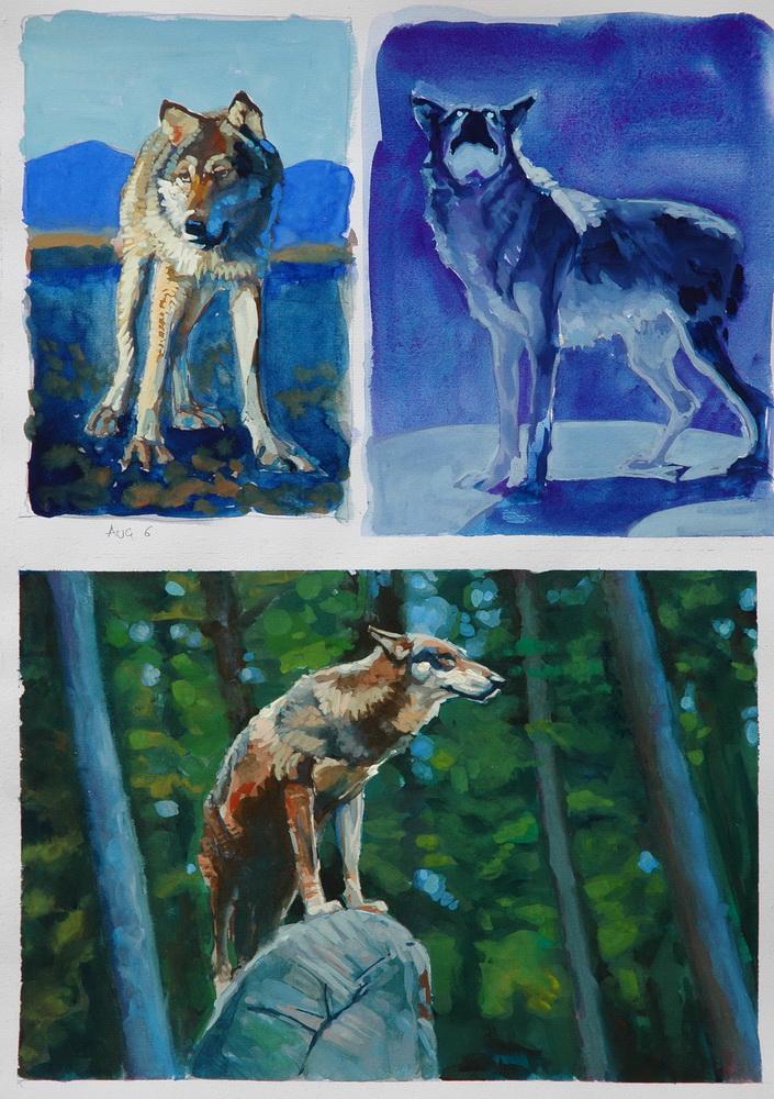 wolf gouache (6).JPG
