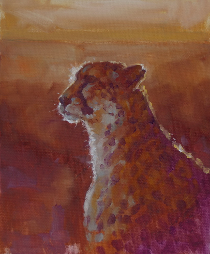5 cheetah.jpg