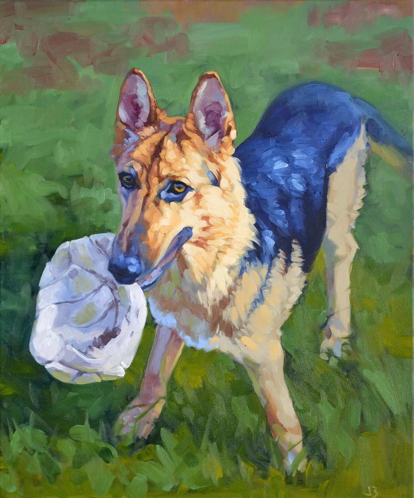 dog german shephard dog.JPG