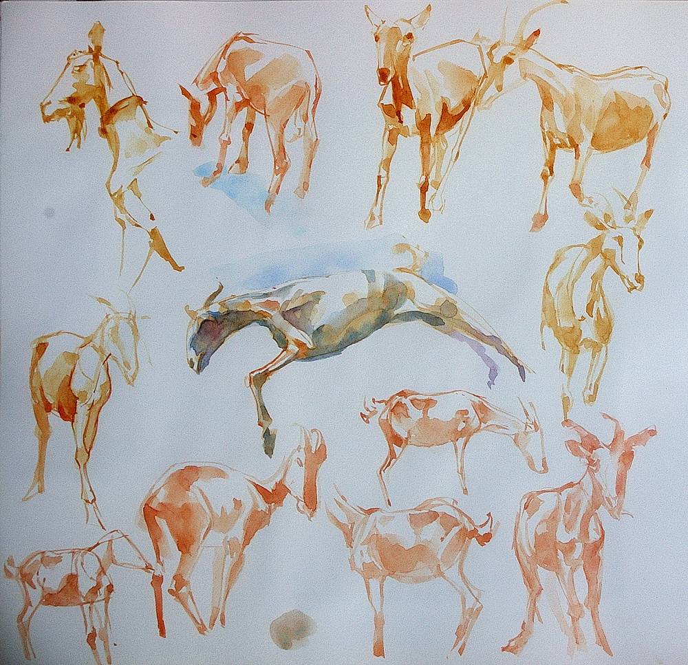 animal watercolor  (2).jpg