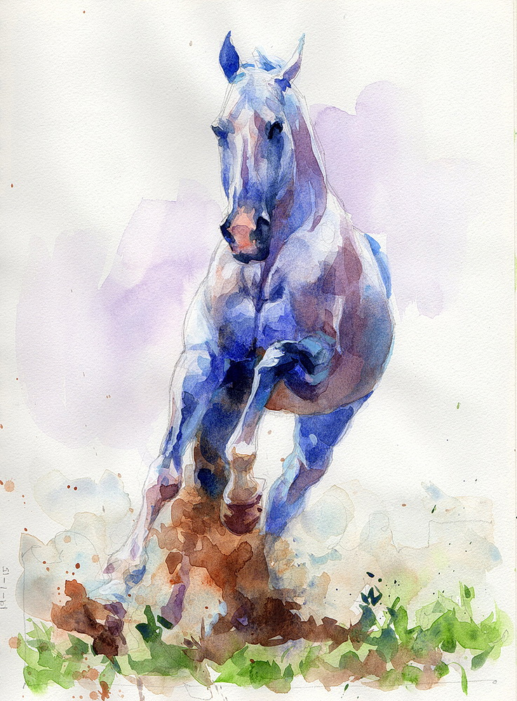 white horse watercolor  (2).jpg