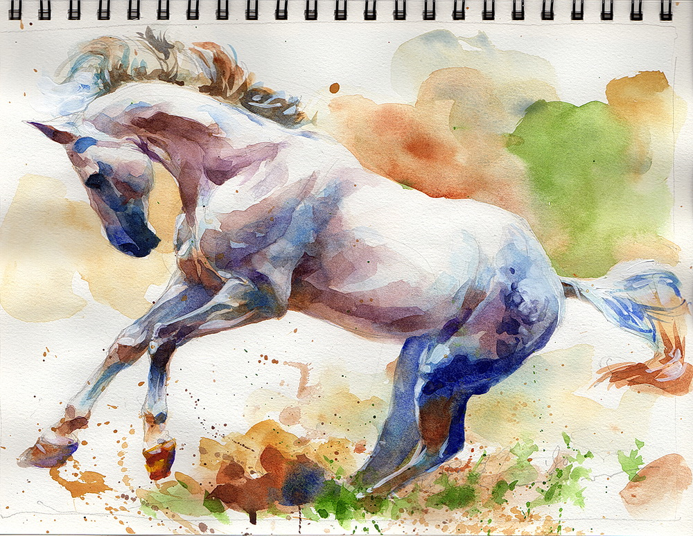 white horse watercolor  (3).jpg