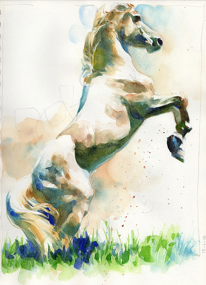 white horse watercolor  (4).jpg