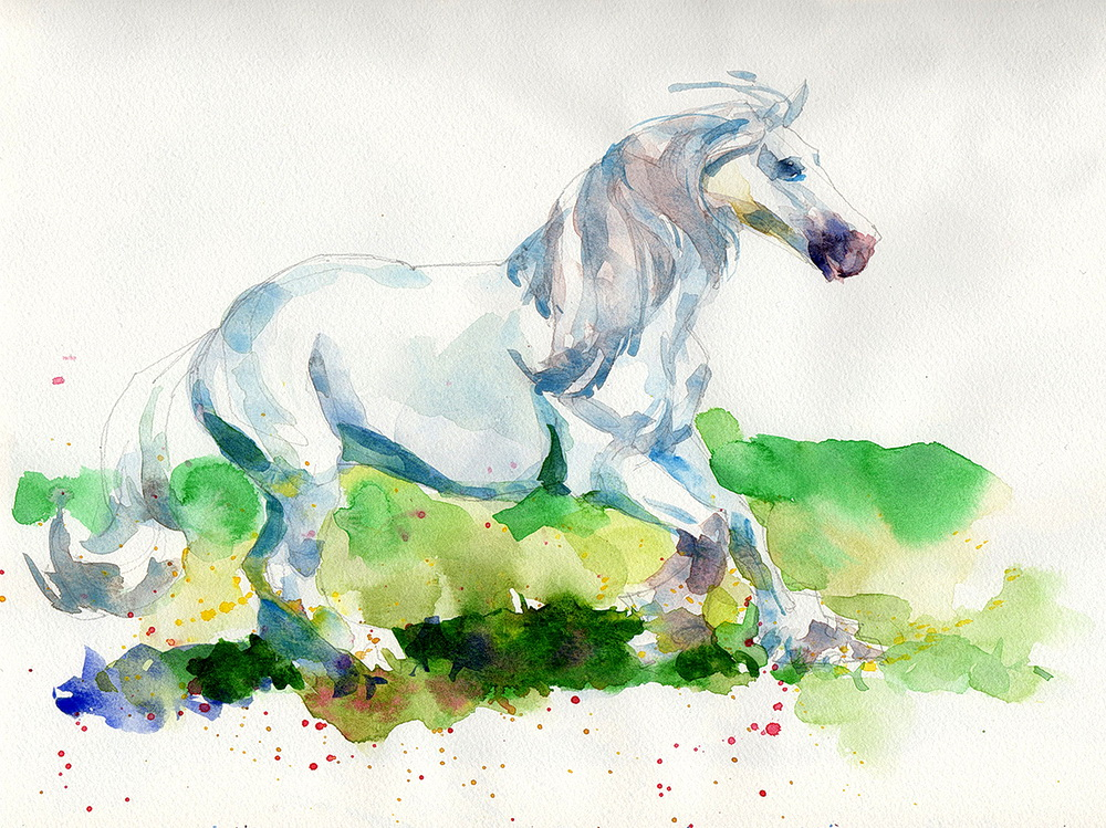 white horse watercolor  (5).jpg