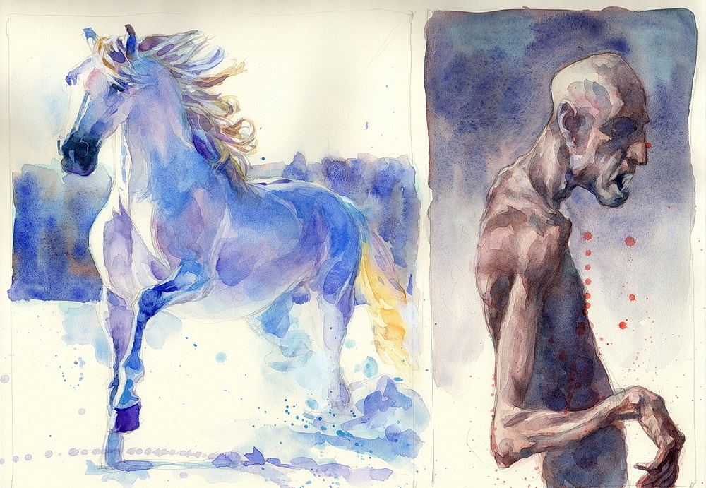 white horse watercolor  (11).jpg