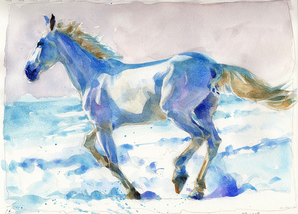 white horse watercolor  (12).jpg