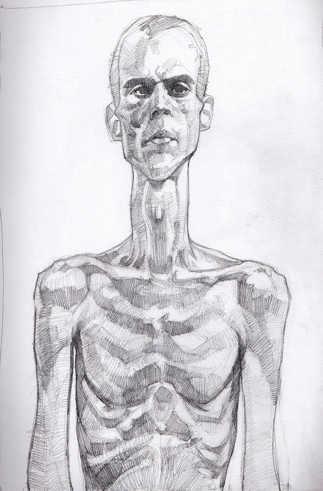 human skeleton.jpg