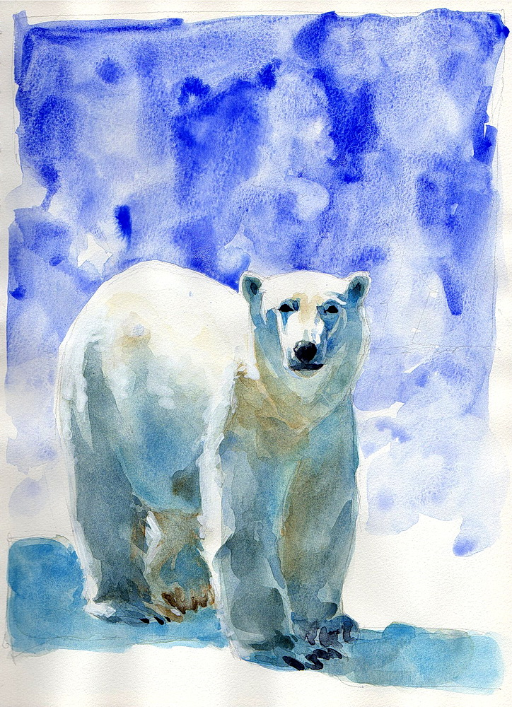 A2 polar bear watercolor (10).jpg