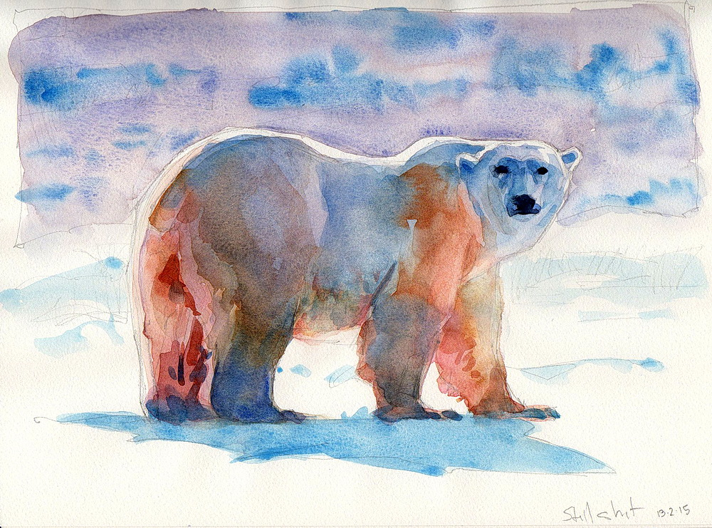 polar bear watercolor (18).jpg