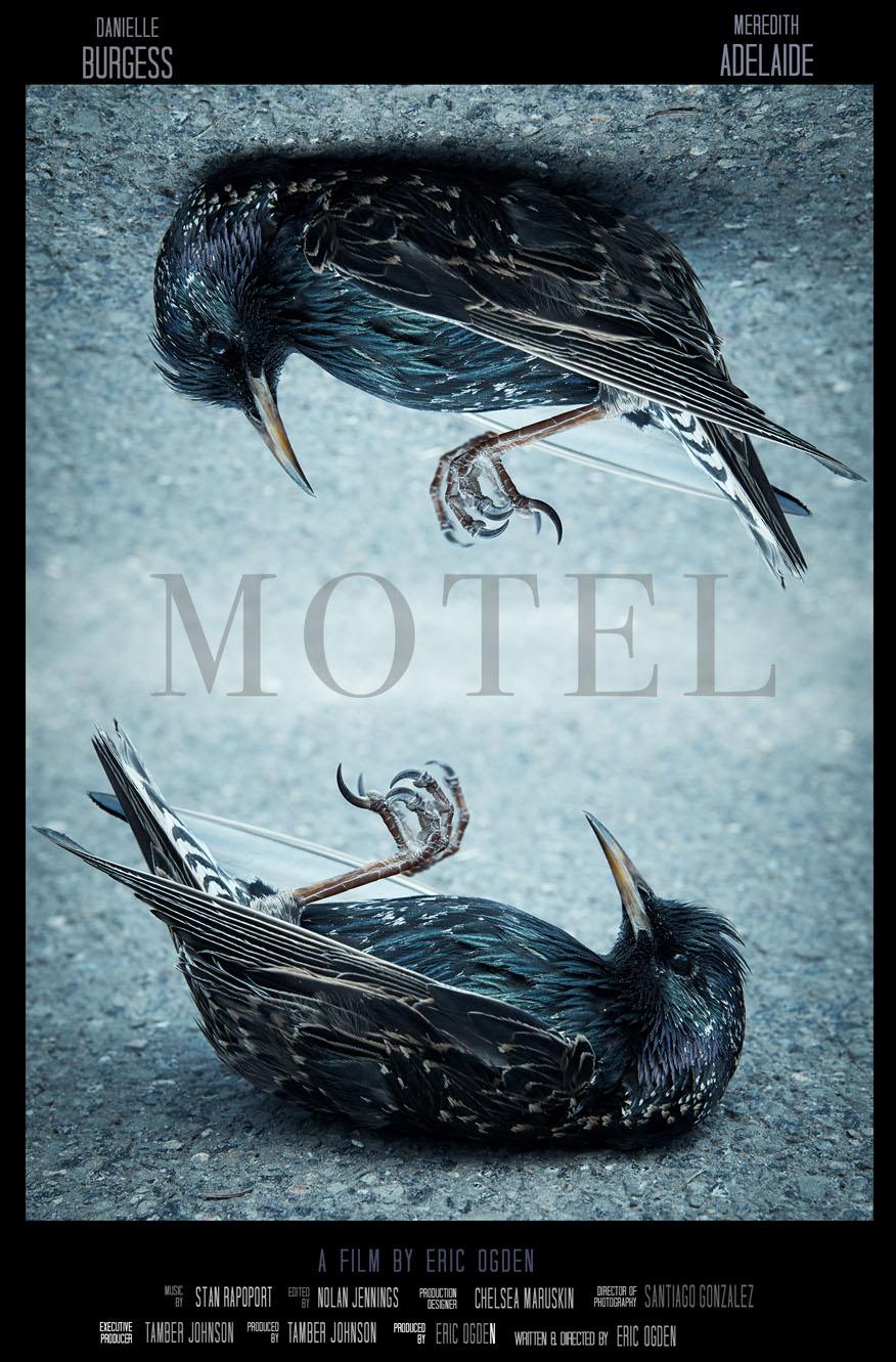 MOTEL_BirdPosterNEW-1crop.jpg