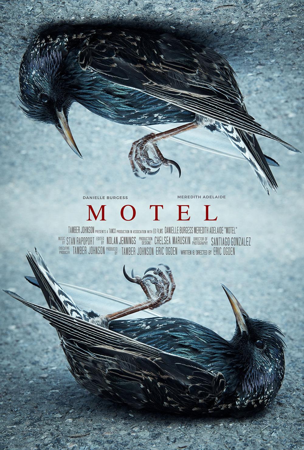 MOTEL_BirdPosterNEW-3_SM.jpg
