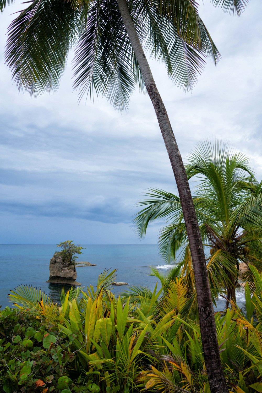 Costa RIca Image Bank