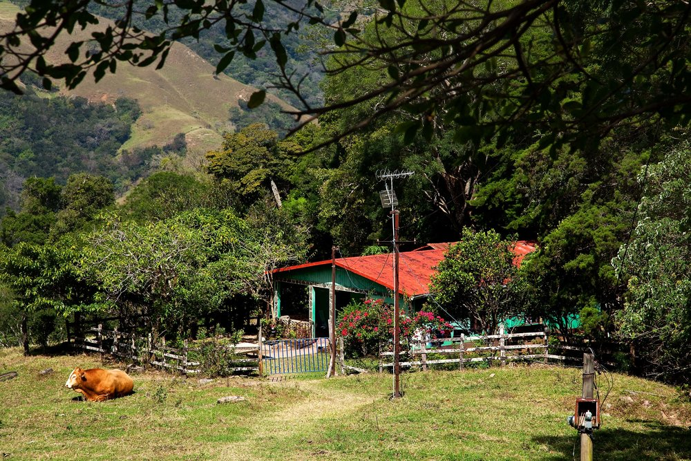Costa RIca Image Bank