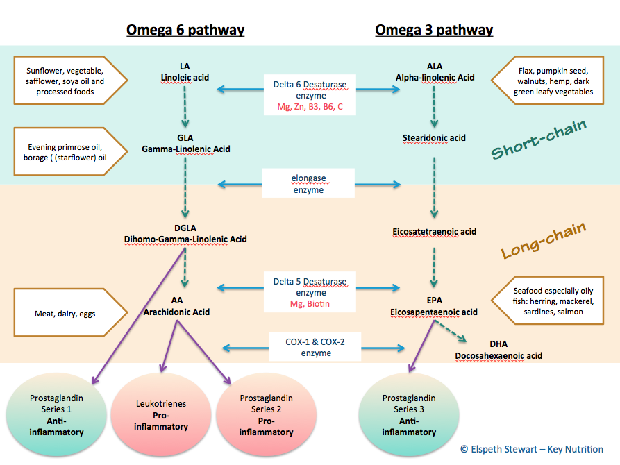 Omega pathways and their cofactors