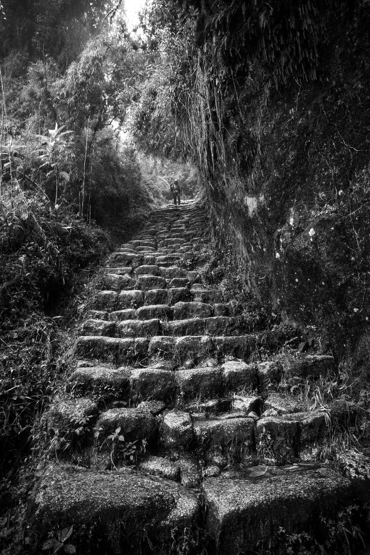 Inca_Trail_2015_78.jpg