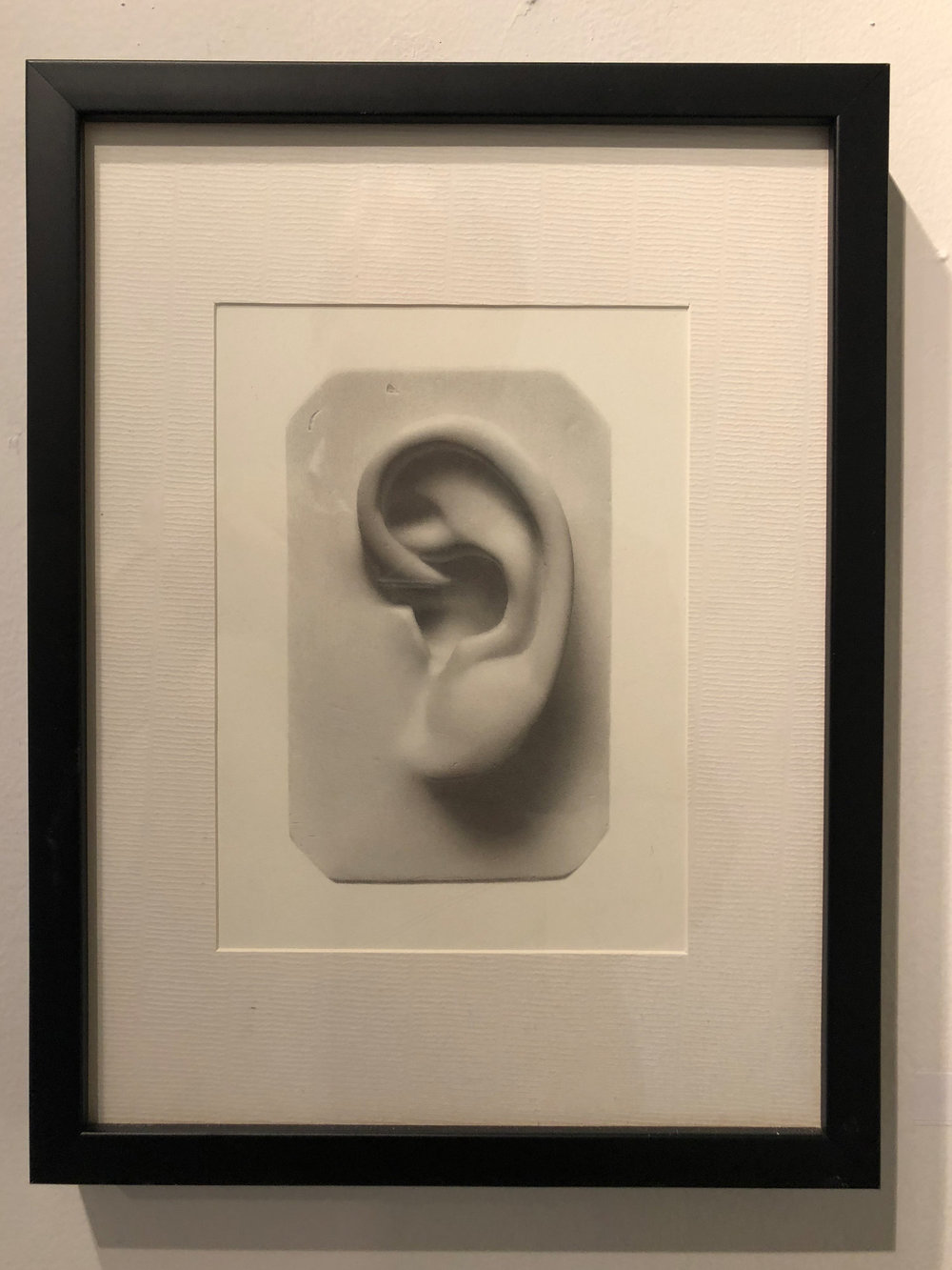 Andrews Shears  Untitled(Ear)  Graphite on Paper