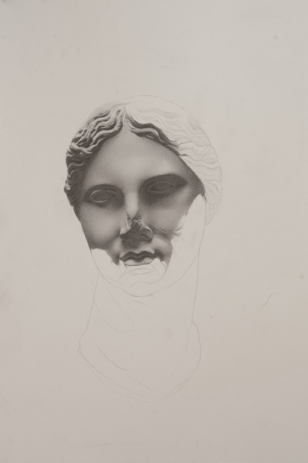 Andrew Shears  Untitled (Head Cast ) graphite on paper