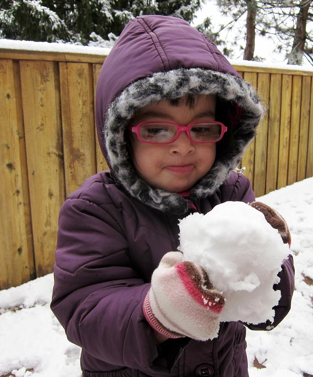 t_snowball.JPG