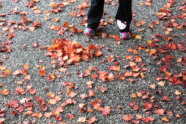 Leaves (plus shoes!)