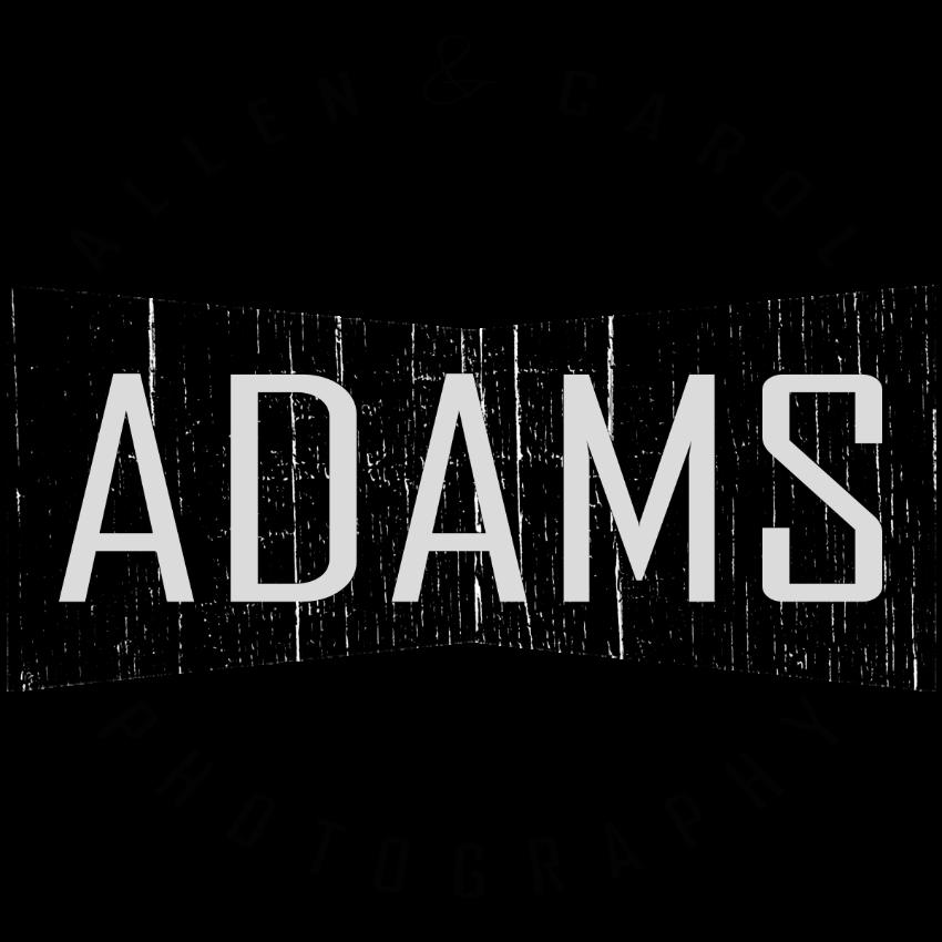 ADAMS_LOGO.png