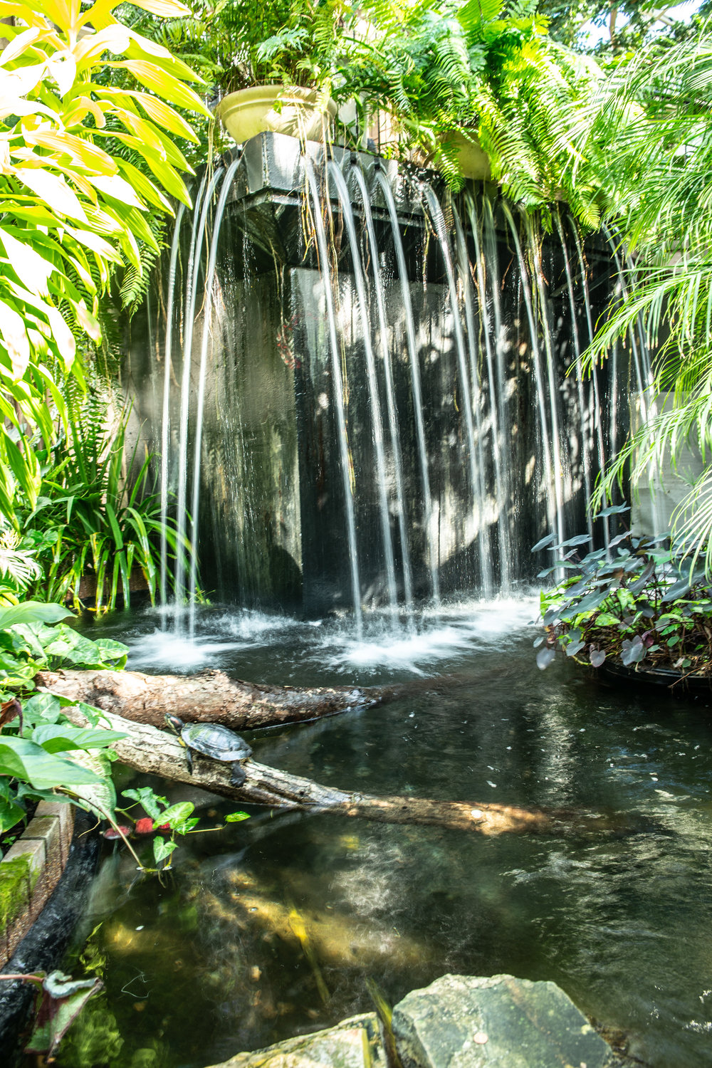 The waterfall in the Butterfly Garden was so peaceful