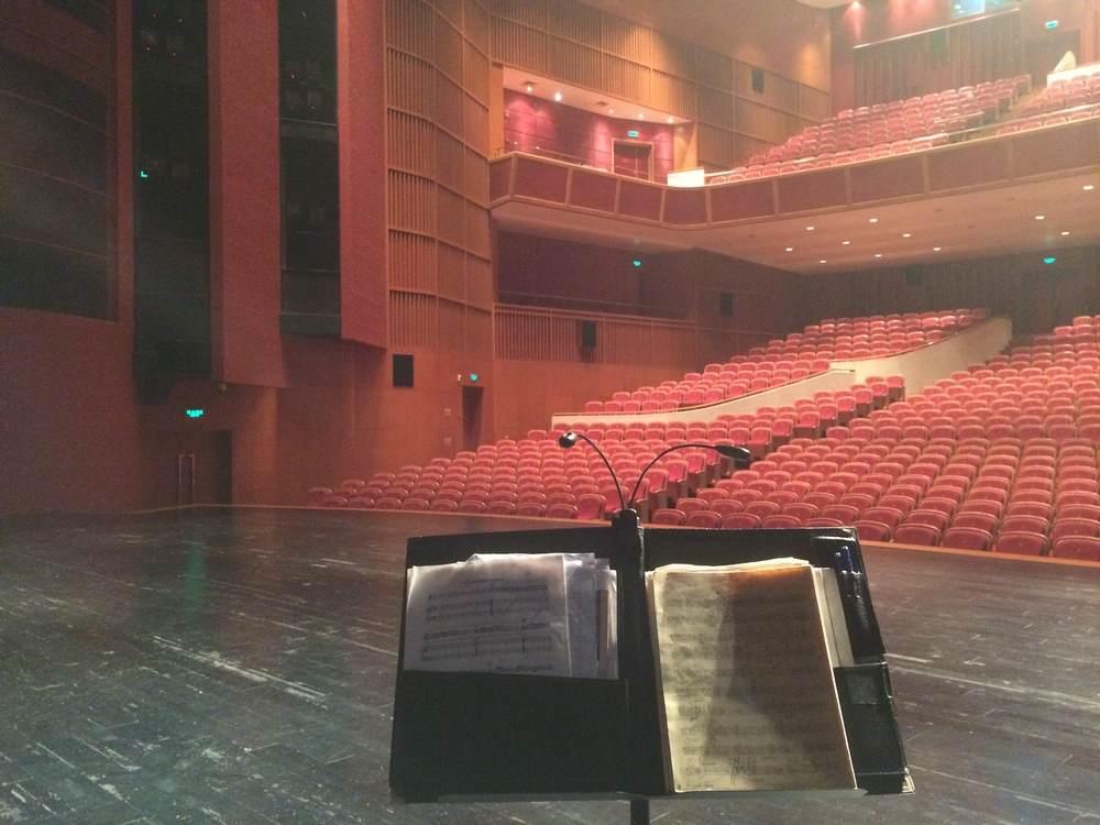 Bass players view. Huizhou Culture & Arts Center Huizhou, China. October 2014