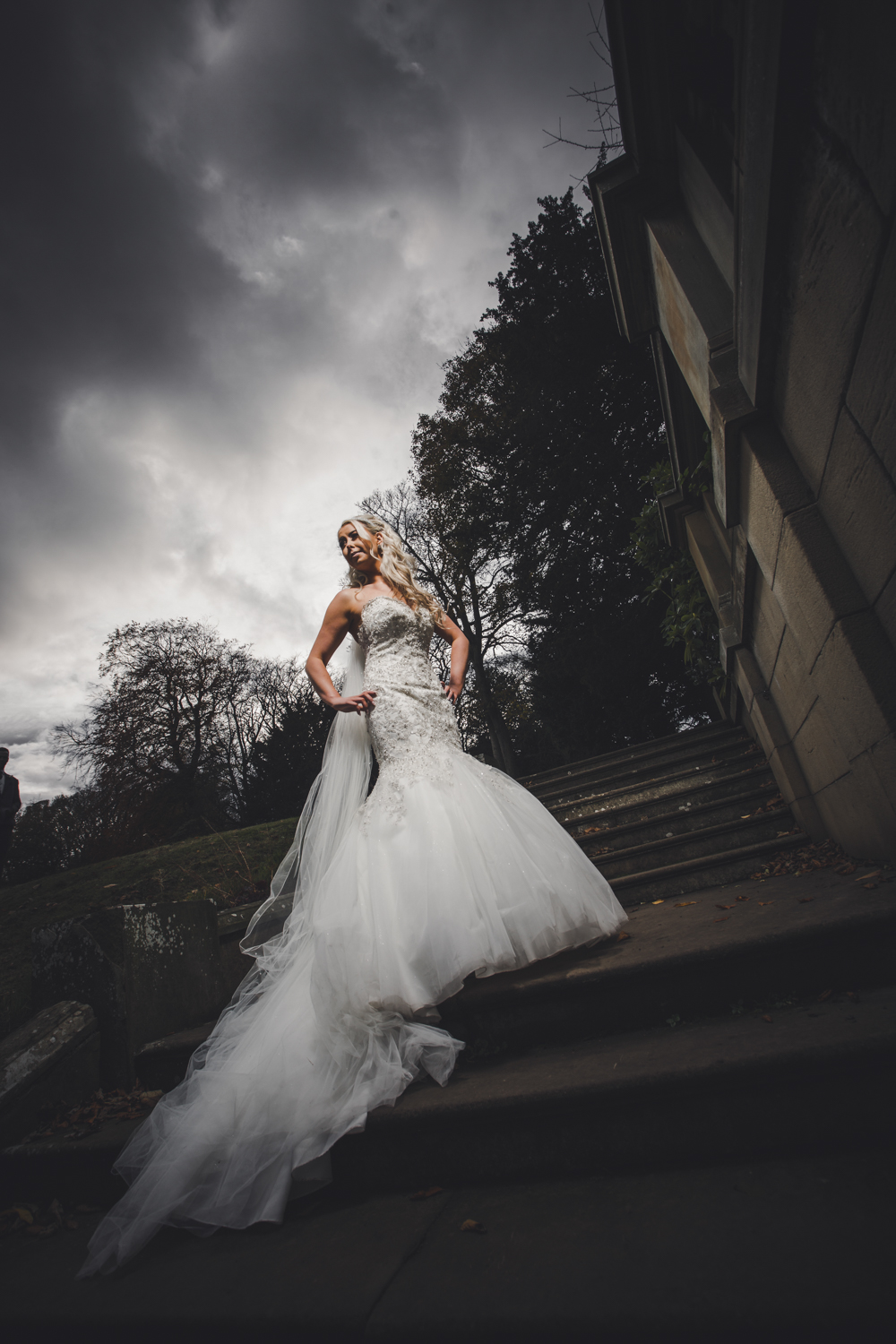 professional wedding photographers sheffield