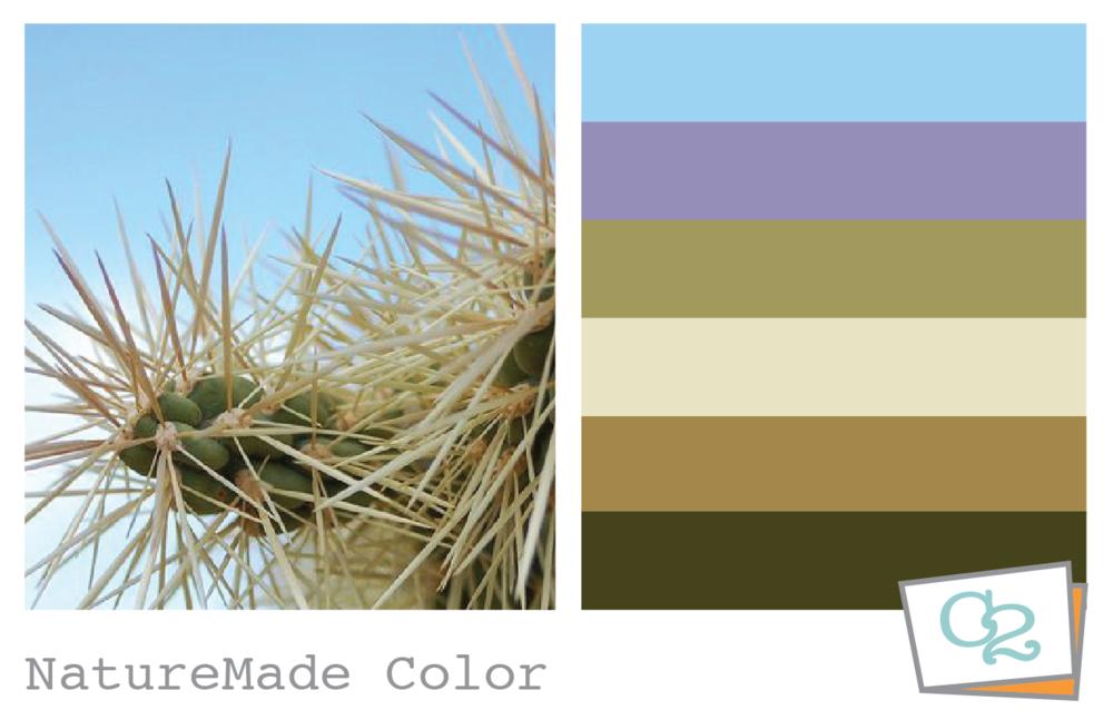 Color Study_Artboard 2.png