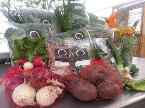 Winter CSA Selection.jpg